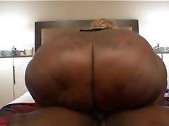 BBW, Big Butts, Facial
